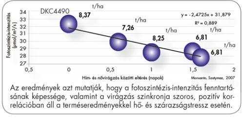 42_5_DEKALB_ASZALY