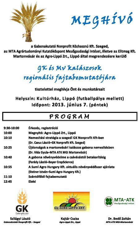 meghvLippo2013_1