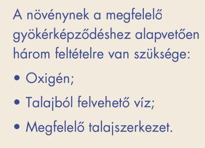 94_2 DEKALB DKC5007