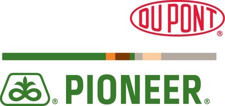 pioneer logó2