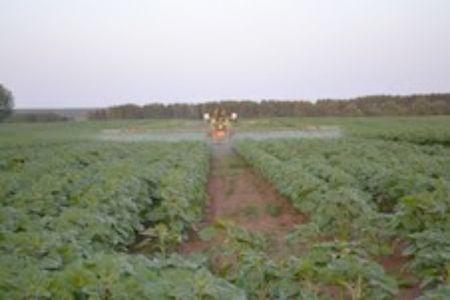 Akik a saját táblájuk terméseredményén megtapasztalták az Algafix termésnövelő hatását, azok között volt, aki művelőutasra vetette a napraforgót, annak érdekében, hogy a permetezőgépével még a magas növényeket is kezelni tudja Algafix-el.