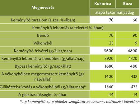 Modellszámítás a nagy tejtermelésű tehenek glükozellátására vonatkozóan kukorica és búza alapú takarmányadag etetésekor (tejtermelés:40 kg/nap, glükoz igény:3,5 kg/nap, gabonamagból származó szárazanyagfelvétel:8 kg/nap)(Flachowsky és Lebzien, 1997)