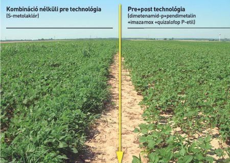 2. kép: csak pre és pre+ poszt technológia
