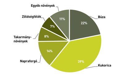 A szántóföldi növények betakarított területének megoszlása, 2012