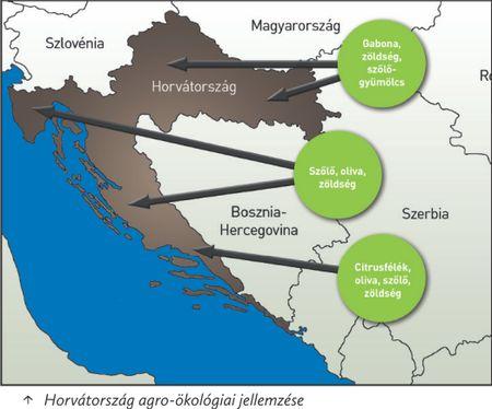 97.horváto