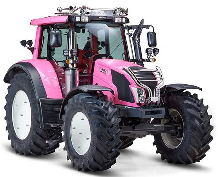 PinkLady900