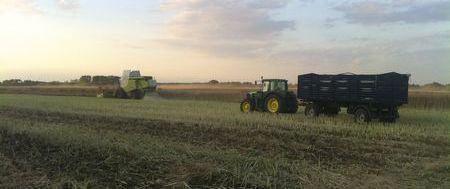 37.traktor