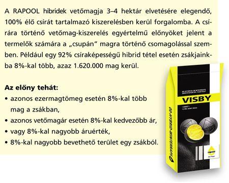 Rapool_Visby_kiszereles_2014aug