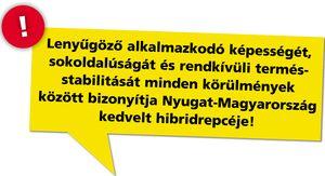 Rapool_Visby_sarga_flekk_2014aug