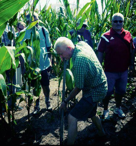 Mikó Ferenc a talaj szerkezetét  vizsgálja Amerikában is