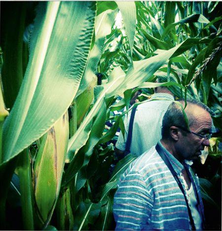 Szente Mihály határszemlén,  David Hula farmján