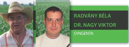 112.Radvány, Dr.Nagy