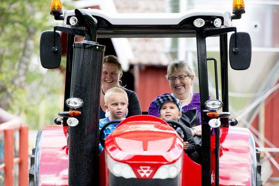 Major Award for Little Grey Fergie Tractor Theme Park