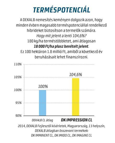 DK Impression