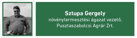 sztupa gergely