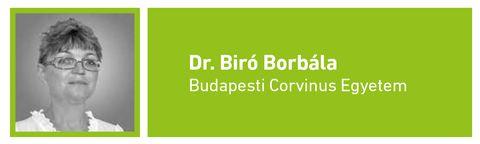 BiroBorbala-foto