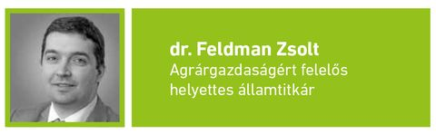 Feldman Zsolt