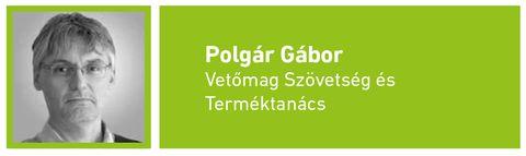 Polgar_Gabor