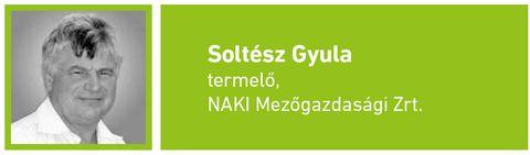 Soltesz_Gyula