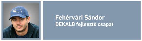 Betakarítás_Fehérvári Sándor