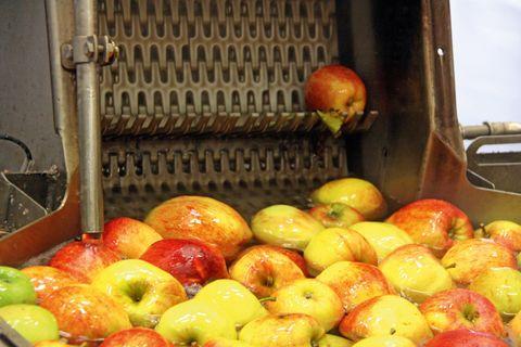 Mezőgazdaság_Brüsszel_Pc fruit