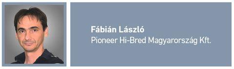 napraforgó_Fábián László_