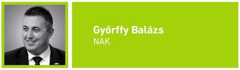 gazdaság_ Győrffy Balázs_NAK_elnök