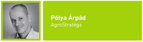 gazdaság_ Polya_Arpad_2015