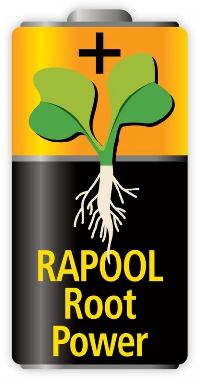 rapool_root_power_elem
