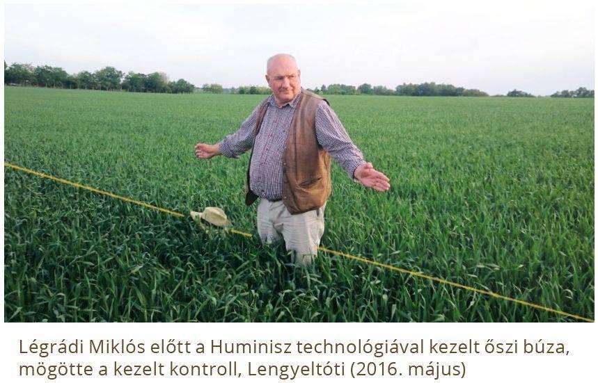 huminisz-buza-2017-08