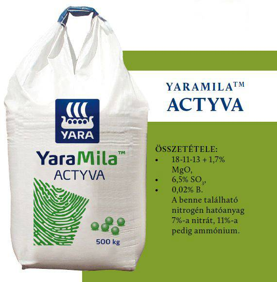 33-yaramila-actyva