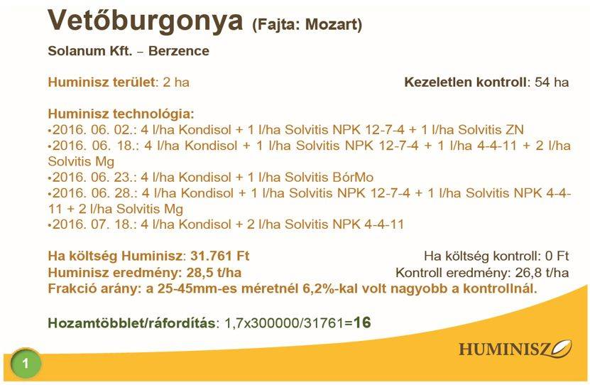 huminisz-burgonya-2018-1