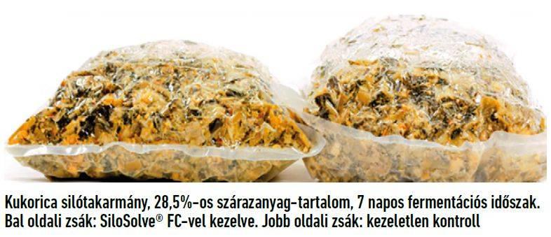 103-silosolve-fc-1