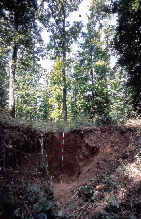 76-augusztis talajegyetem3_kisebb_kep