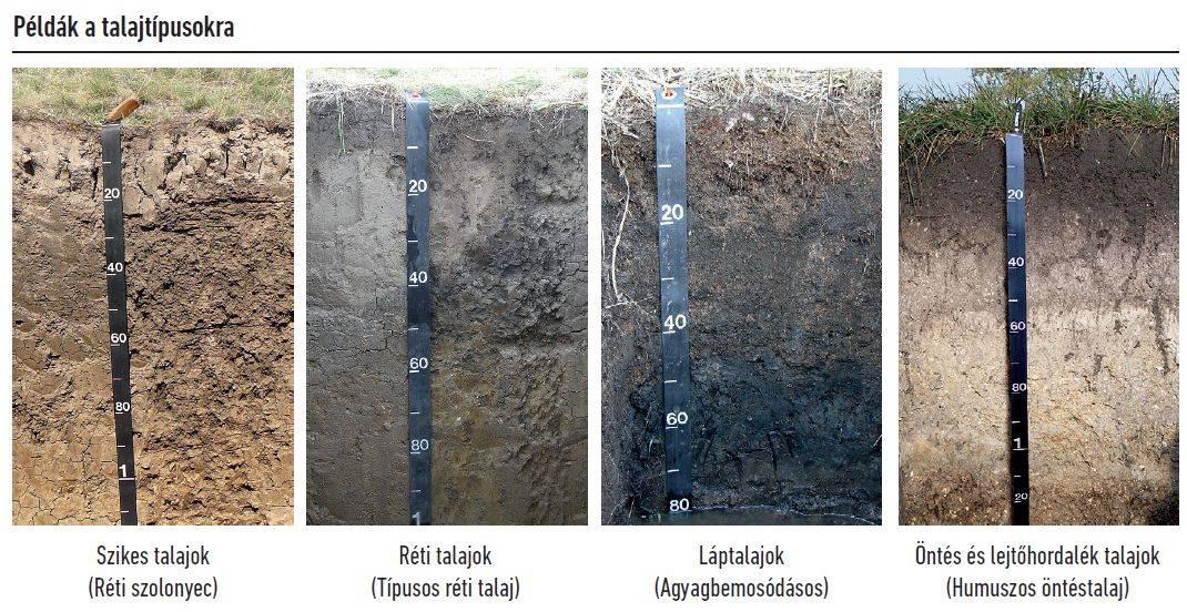 57-talajegyetem-talajtipusok-2
