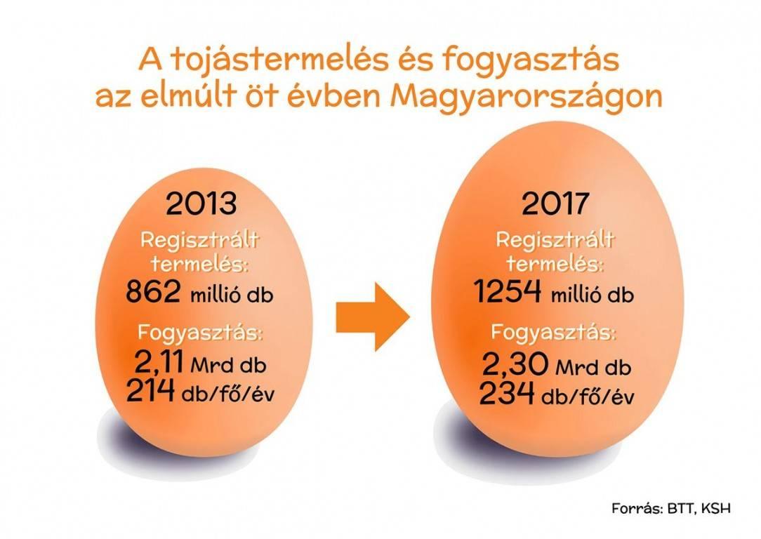 tojas-infografika1-k