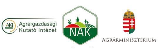 aki-nak-am-logok