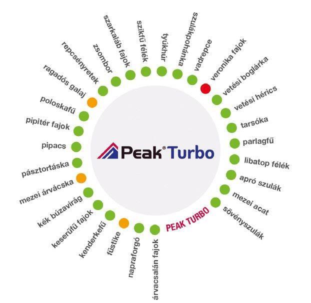 peak-turbo-1-abra
