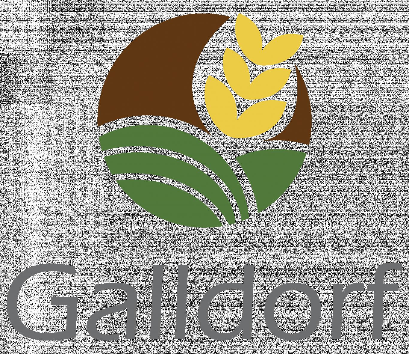 galldorf_logo_1