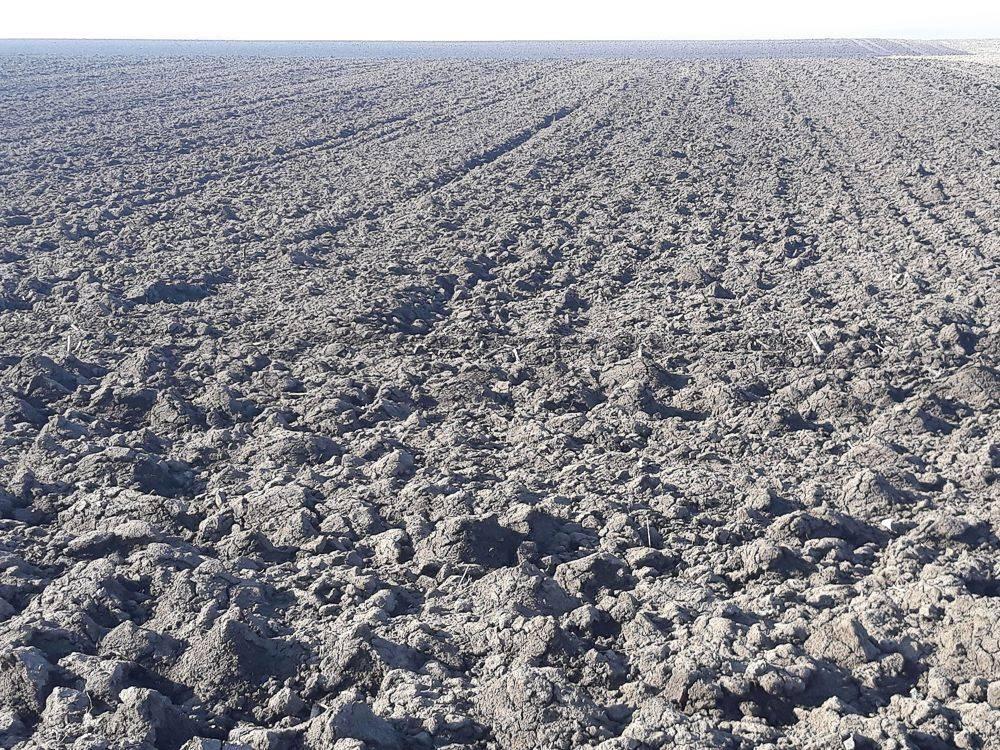 55-talajegyetem-xvi-1.kép