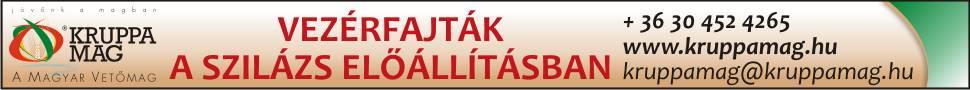 kruppa mag banner