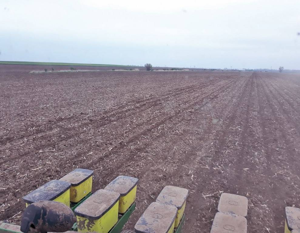 23-talajegyetem-rossz-szecskazas-es-heterogen-mulcsboritas