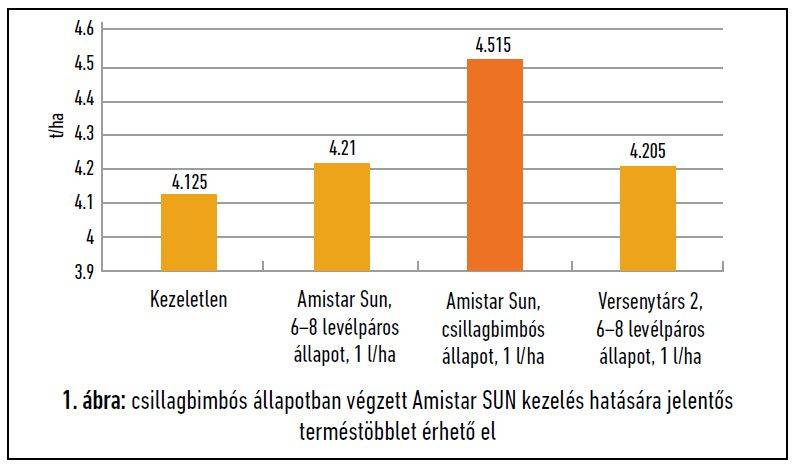 41-amistar-sun-abra