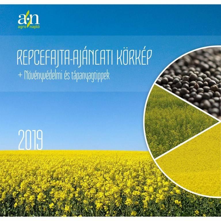 repcefajta_ajanlati_korkep_2019_oldal_01
