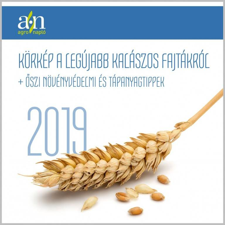 an-kalaszos-kiadvany-borito-2019-2