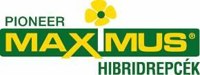 pioneer_maximus-logo