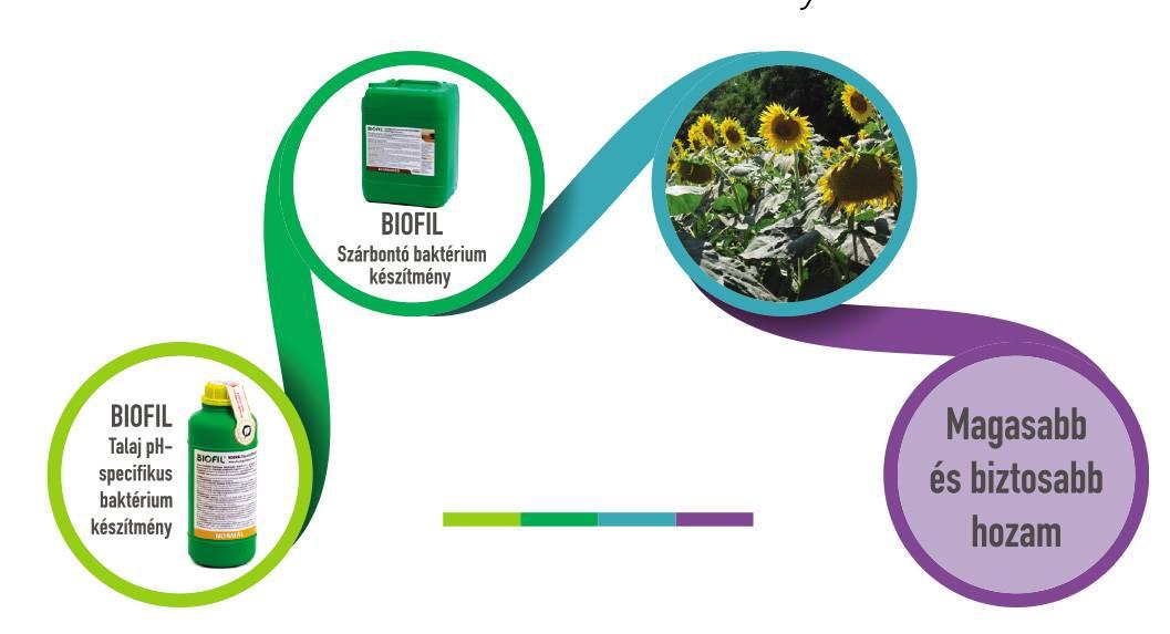 biofil2