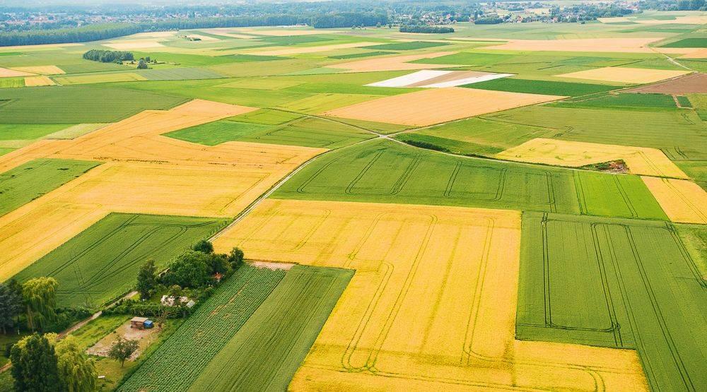 Tájékoztató mezőgazdasági összeírásról