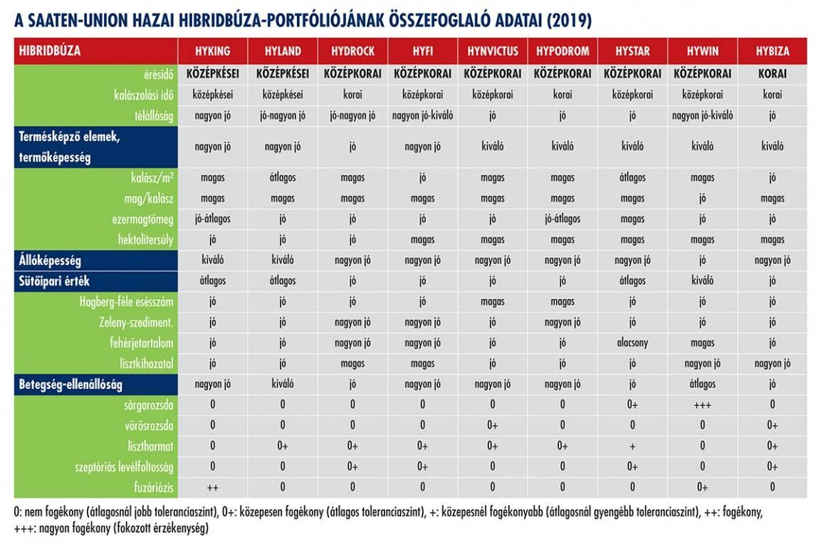 su_hyseed_pr-cikk3_tablazat1_hibridbuza_2019szept