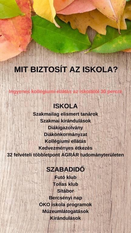 am-kaszk-5